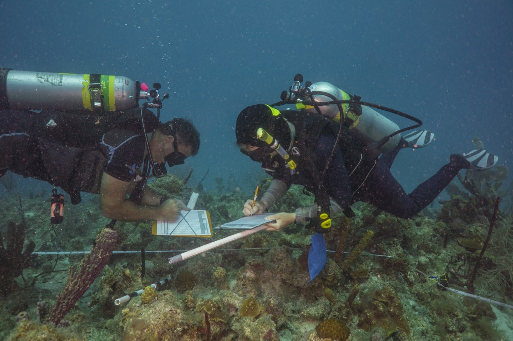 Mark and NOAA ecologist Margaret Miller work together to finish a demo survey.