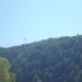 Bald Eagle over the mountains