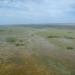 freshwater marl prairie