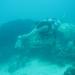 sunken sailboat on checkout dive