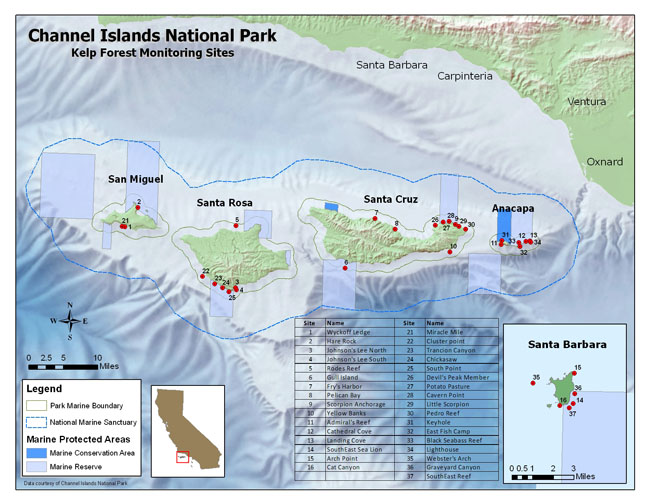 Channel Islands National Park-Kelp Forest Monitoring | Our World ...